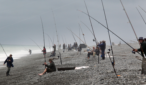 surf fishing competition