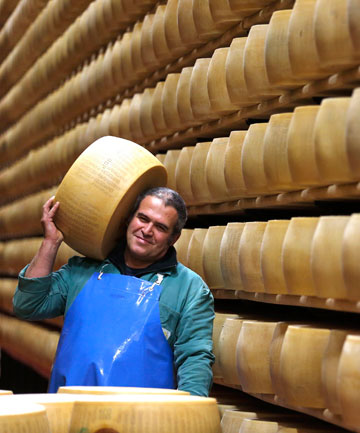 A worker checks Parmesan cheese wheels.