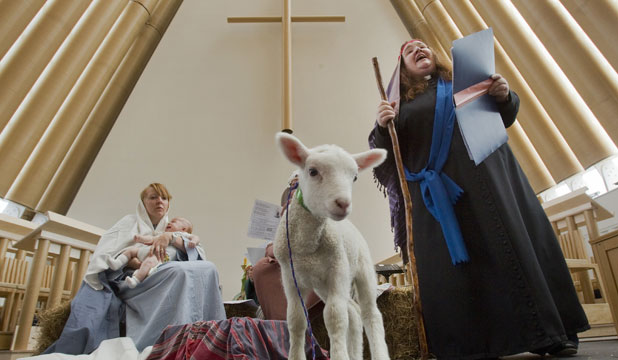 Transitional Cathedral lamb