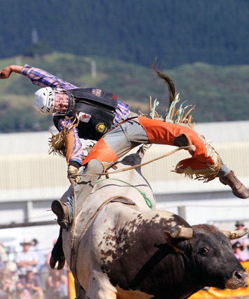 Sam Greenwood will vie for the bull-riding title at the Canterbury Rodeo