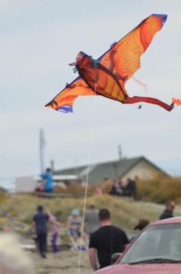 Kite Day in New Brighton, 2014