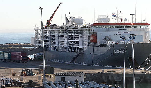 Livestock carrier Dareen loads dairy heifers for China.