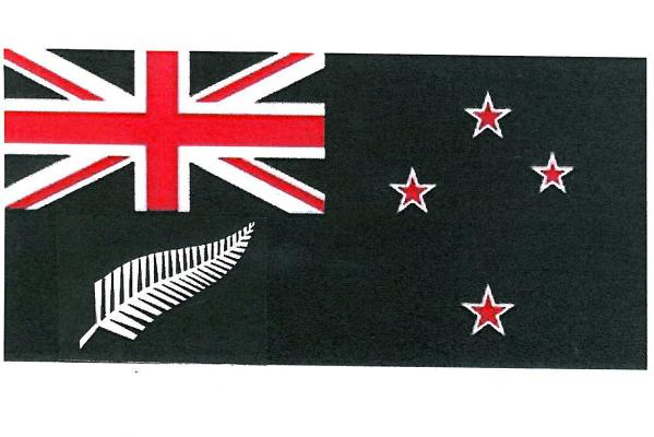 Anne Jones New Zealand flag design