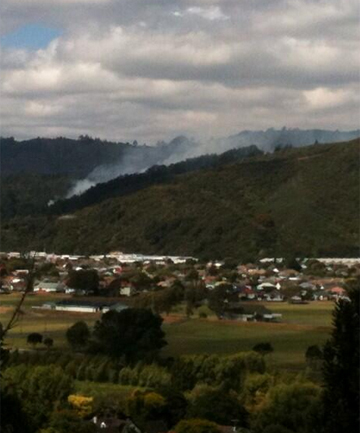 Taita bush fire