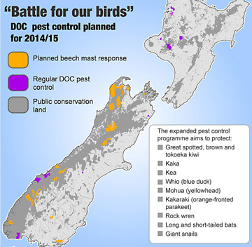 Bird battle map
