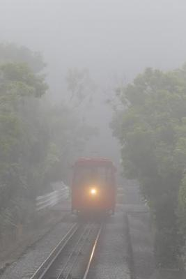 Fog in Wellin