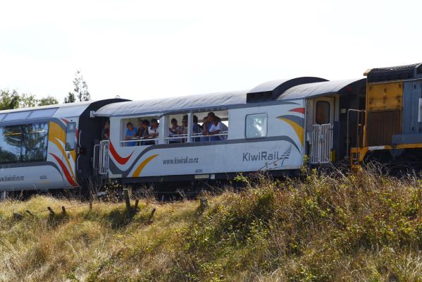 Waikato train crash