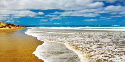 Ninety Mile Beach Expedia