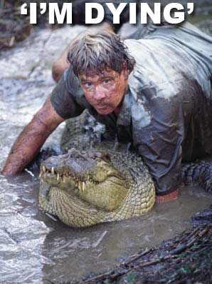 Steve Irwin splash
