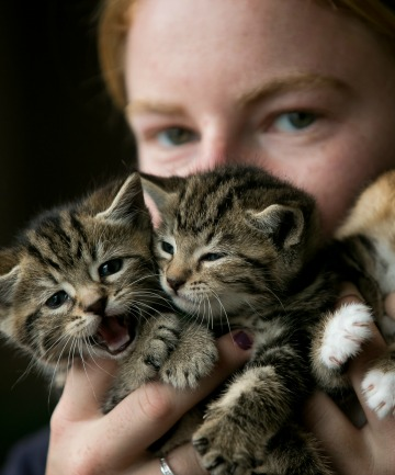 Jess Woodcock with three of the kittens at the centre.