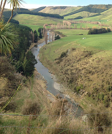 The Pareora River running through buffer zones of trees and grass on Peter and Jane Ev