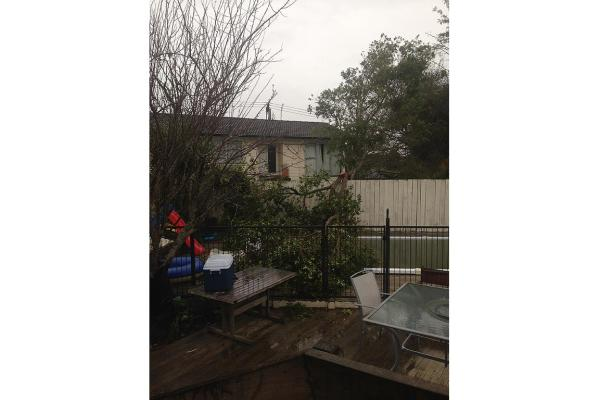 A tree landed in a pool after high winds in Massey, West Auckland.