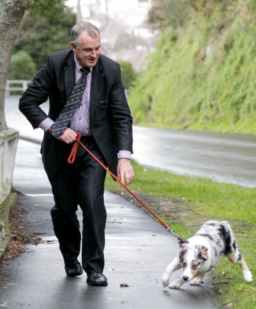 Old and new dogs:  Trevor Mallard, went walka