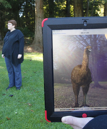 Jo Russell, of Otorohanga Zoological Society, in Rotary Park where the virtual moa is being brought to life.