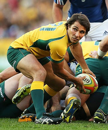 WEARY: The All Blacks may have lost Dan Carter, but Wallabies halfback Nick Phipps says th