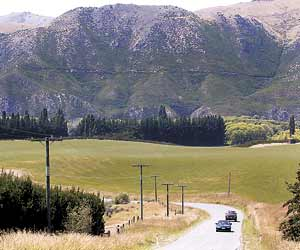 Leading The Way Behind Cheviot Stuff Co Nz