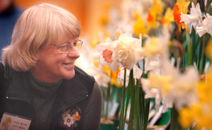 BEST IN SHOW: Lesley Ramsay, of Koanga Daffodils, with her champion and reserve champion blooms at the South Island National Daffodil show held at Central Southland College, Winton, at the weekend.
