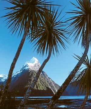 KEYSTONE OF TOURISM: The snow-capped Mitre Peak dominaes Milford Sound and millions of tourists' memories of New Zealand's scenic icon.