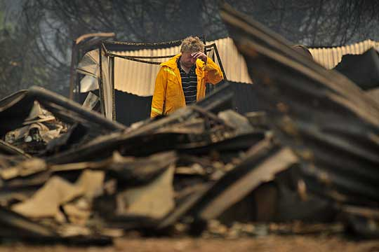 DEVASTATION: Paul Beckman, 53, sifting through the ruins of his life after fires destroyed his house and livelihood at Narbethong near Healesville.