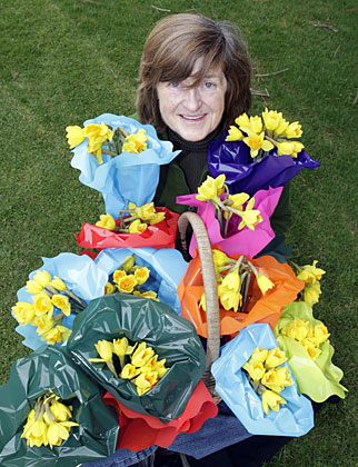 daffodil day gallery