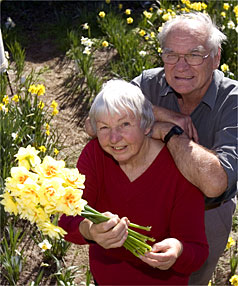 Barbara Bright and her husband, Rex,  hope they have winning daffodils in this year's Marlborough Horticultural Society Spring Show.