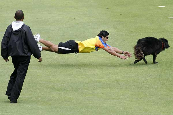 An official attempts to catch a dog that disrupted play in the opening game of the 2009 IPL Twenty20 cricket tournament between the Mumbai Indians and Chennai Super Kings in Cape Town.
