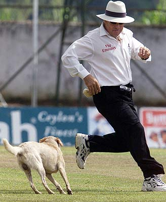 Australian umpire Darrel Harper sidesteps a stray dog during the second test between New Zealand and Sri Lanka in Kandy.