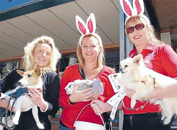Rachael Emington (left) with Billy, Rebecca Pine with Smokey the kitten and Jo Weir with Kujo collect for the SPCA outside Tatler in Queenstown.