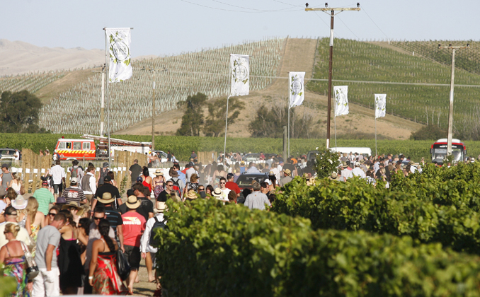 Marlborough Wine Festival