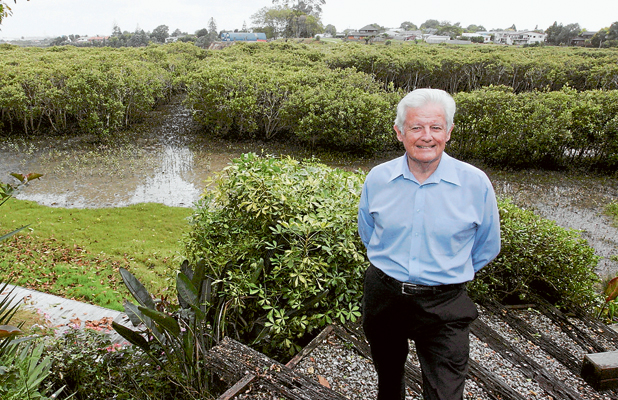 VICTORY: Pahurehure Inlet Protection Society chairman Graham Purdy says trying to get resource consent from the Auckland Regional Council to remove the mangroves has been a roller-coaster ride but finally some of them are coming out.