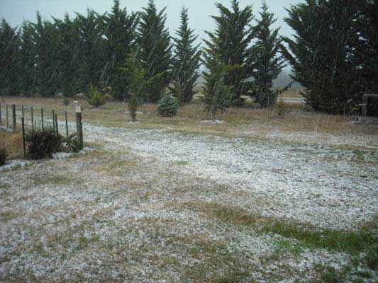 hail, Culverdon, Canterbury