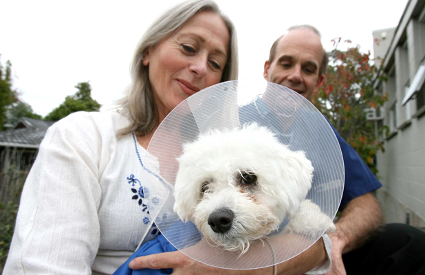 NEW LEASE: Linda Nunn was able to get Boo Boo the surgery he needed with the help of vet Mike Small and donations from Auckland City Harbour News readers.