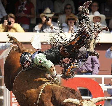 Kanin Asay gets bucked off the bull Bad Rumour in the Bull Riding event during the rodeo at the Calgary Stampede in Calgary.