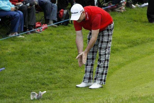 South Africa's Rory Sabbatini chases away a pigeon as it sits next to his ball at the edge of the green at the fourth hole during the final round of the Scottish Open golf tournament at Loch Lomond golf course near Glasgow.