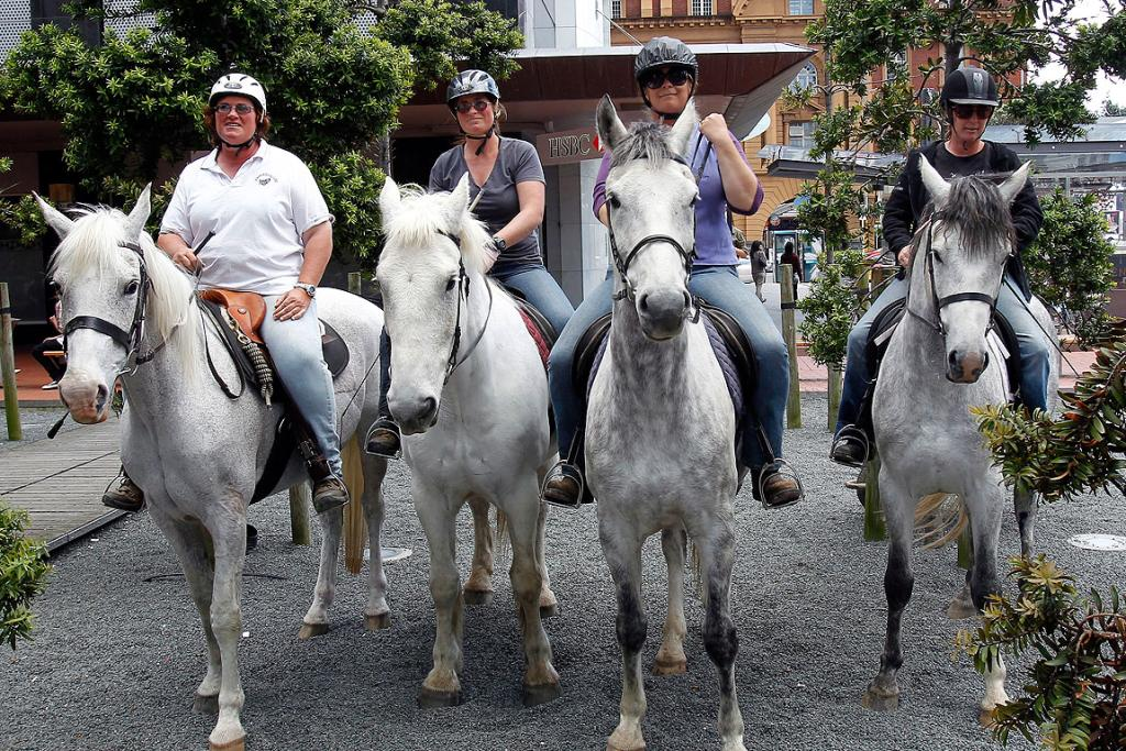 FOUR HORSEMEN: Fans show their support for The Hobbit in Auckland.