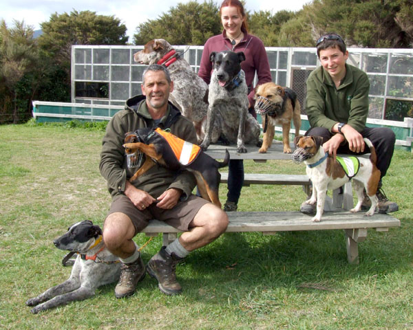 Big test: The team with people from left, Scott Theobald, Leona Plaisier  and Liam Plaisier. Dogs, from left, Julz, Scott's trainee pig dog; Chase, Leona's rat/mice dog; Whero, Scott's right hand pig dog, Blue, Scott's left-hand pig dog; Crete, Scott's fully certified stoat dog; and Rova, Liam's rat dog.