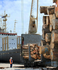 BIG LOAD: The Baishaling is loaded with a large shipment of logs at  Bluff yesterday, before it headed to China.