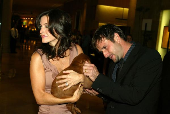 Top entertainment stories - Courtney Cox & David Arquette.