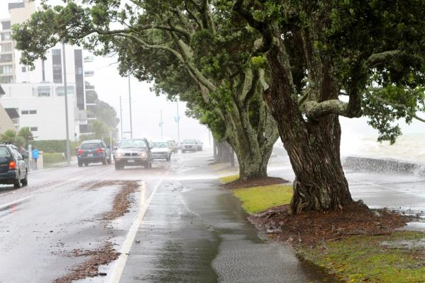 A view along Auckland's Tamaki Drive.