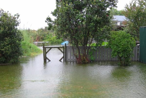 TAURANGA WET: This was the result of a combination flood & high tide.