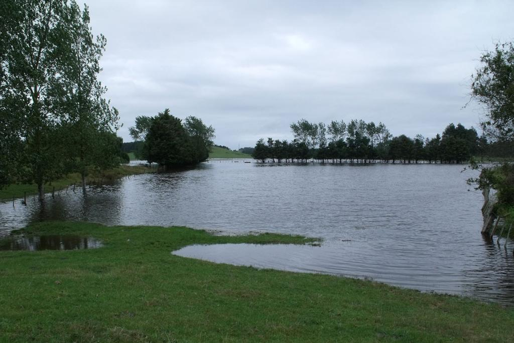 A flooded dairy farm at Awakino Point, just east of Dargaville.