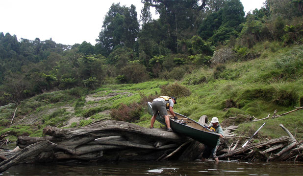 PILGRIMS' PROGRESS: Every now and then an idyllic two-week trip along Taranaki's two major waterways hits a snag. Reporter Matt Rilkoff and photographer Cameron Burnell needed brute force to get their canoe up and over a log jam on the Waitara River. They were soon back in smooth water.