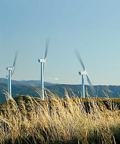 NZ Windfarms