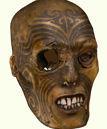 TOI MOKO: A computer generated image of the Maori head that was returned.