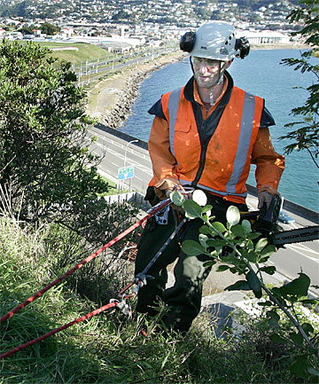 TELLTALE SIGN: Technician Geoff Henson carries out preparatory work on the hillside where  the airport plans to erect its Wellywood sign.