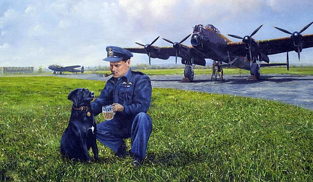 Dambuster dog Nigger, renamed Digger for Peter jackson film