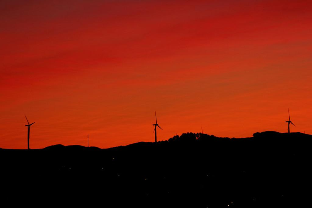 The reddened sky as seen from Wellington.