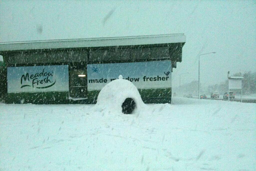 An igloo in Christchurch.