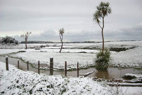 Snow/Halcombe