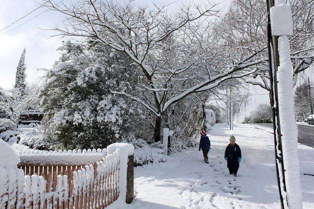 George and Hunter Farman enjoy a walk in the snow in Masterton.